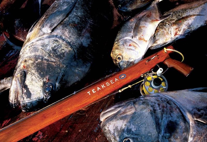Teak Sea - Azimuth